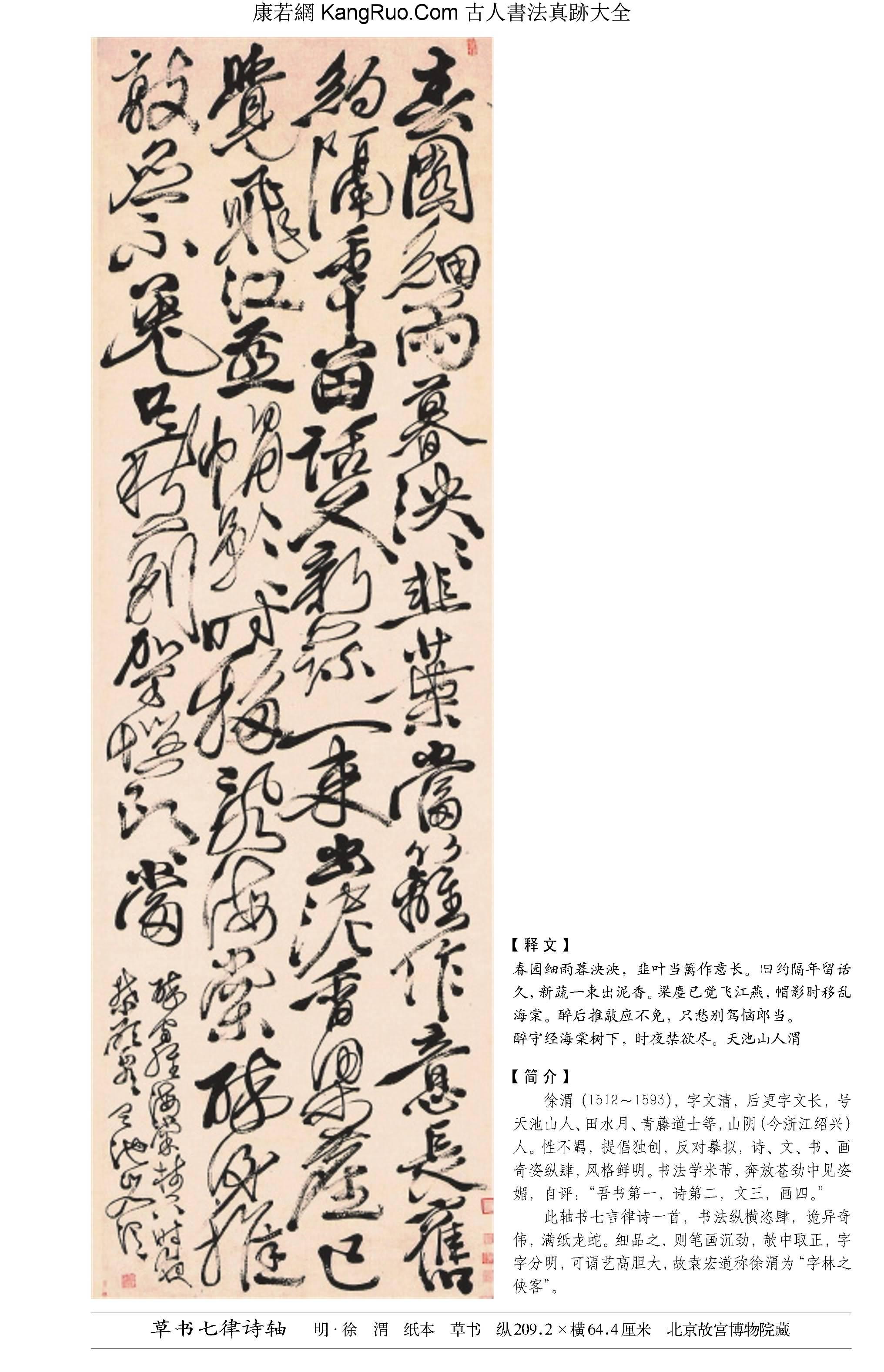 《草書七律詩軸》書法真跡【明朝·徐渭】_00195